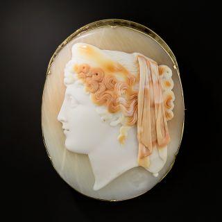 Victorian Shell Cameo